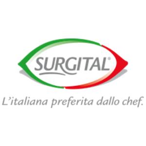 Surgital-logo