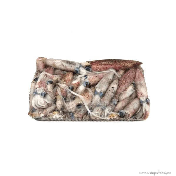 Calamaretti sporchi Indopacifico 3/8 blocco cg.