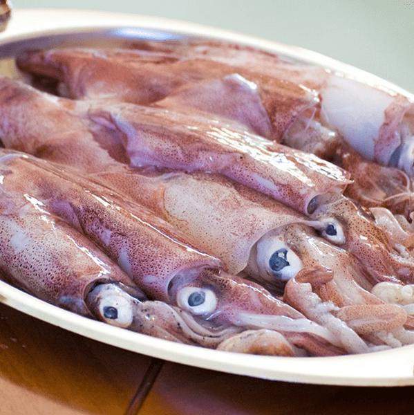 Calamari sporchi